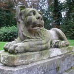 Lew w parku przy Zamku w Oporowie