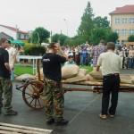 Ogólnopolskie zawody strongman w Janowie Lubelskim