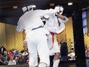 17-mistrzostwa-europy-furo-karate