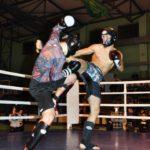 vi-miedzynarodowe-mistrzostwa-polski-kyokushin-karate-interanational-budo-kai-7