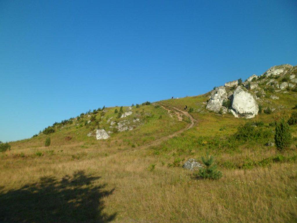 13 Obóz Kyokushin Andrespol Dojo Kokoro (Copy)