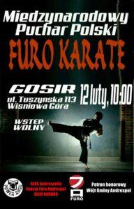 Międzynarodowy-Puchar-Polski-Furo-Karate